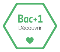 Bachelor e-business rncp bordeaux