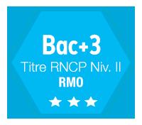 bachelor rncp rmo bordeaux marketing
